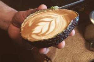 Avolatte - Café Cultura Blog